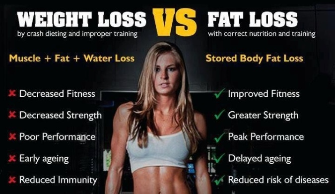 fat vs fit