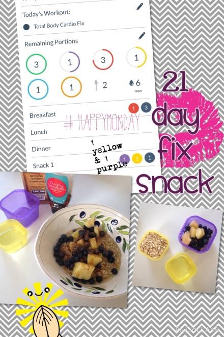 21 day fix oatmeal breakfast or snack